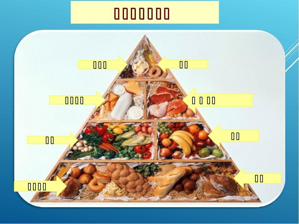 甜食品 牛奶制品 蔬菜 谷物作食 糖果 肉 鱼 鸡蛋 水果 面包 健康饮食金字塔