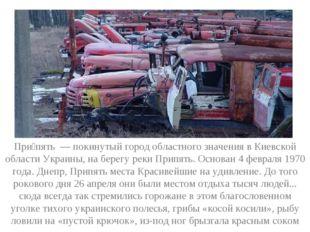 При́пять — покинутый город областного значения в Киевской области Украины, на