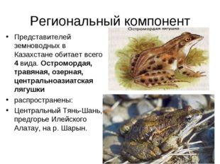 Региональный компонент Представителей земноводных в Казахстане обитает всего