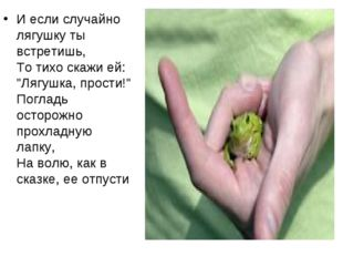 """И если случайно лягушку ты встретишь, То тихо скажи ей: """"Лягушка, прости!"""" По"""