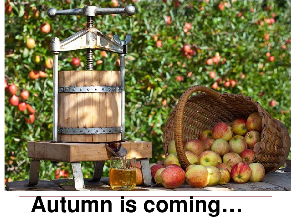Autumn is coming…