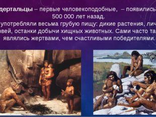 Неандертальцы– первые человекоподобные, – появились более 500 000 лет назад