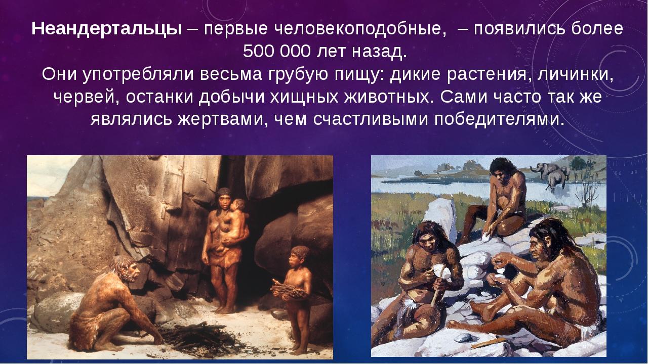 Неандертальцы– первые человекоподобные, – появились более 500 000 лет назад...