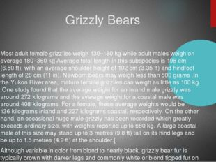 Grizzly Bears Most adult female grizzlies weigh 130–180 kg while adult males
