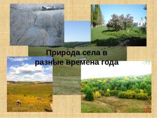 Природа села в разные времена года