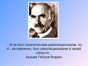 …Я не был политическим революционером, но я , несомненно, был революционером