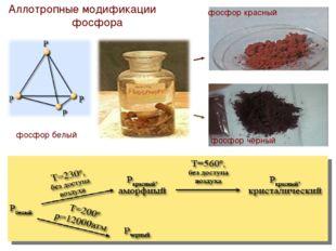Аллотропные модификации фосфора фосфор белый фосфор черный фосфор красный