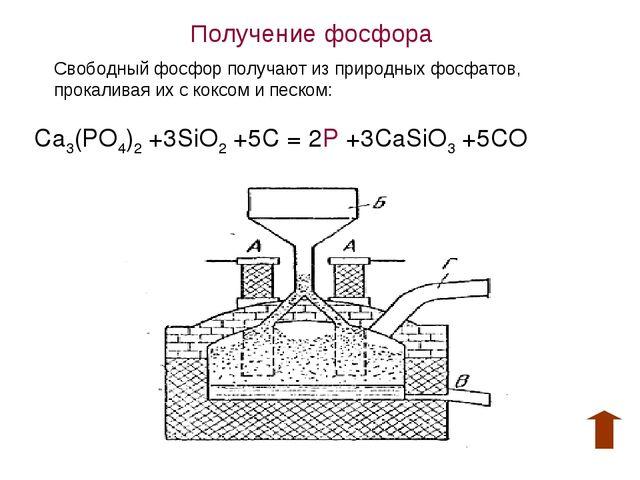 Получение фосфора Свободный фосфор получают из природных фосфатов, прокаливая...