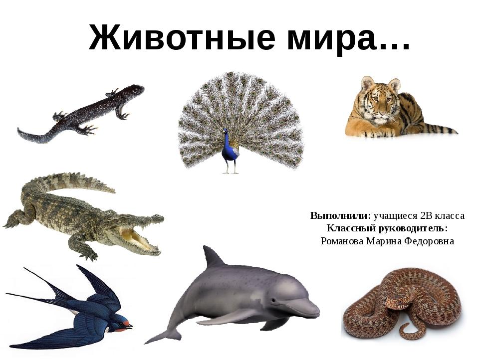 Выполнили: учащиеся 2В класса Классный руководитель: Романова Марина Федоровн...