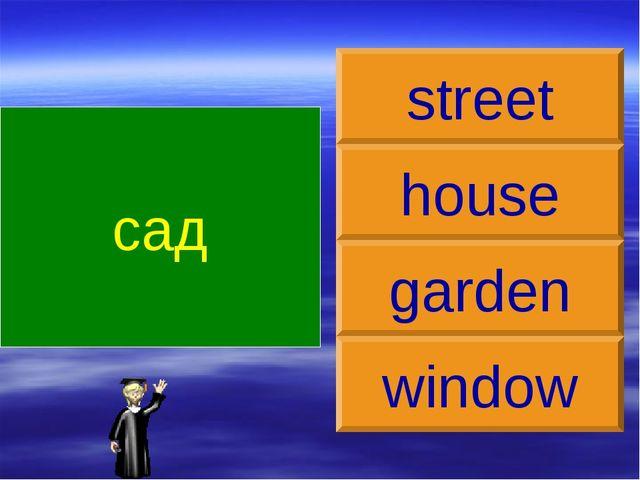 сад garden house street window