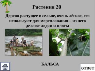 ответ Рельеф и ПИ 50 Какие полезные ископаемые преобладают на территории Рав