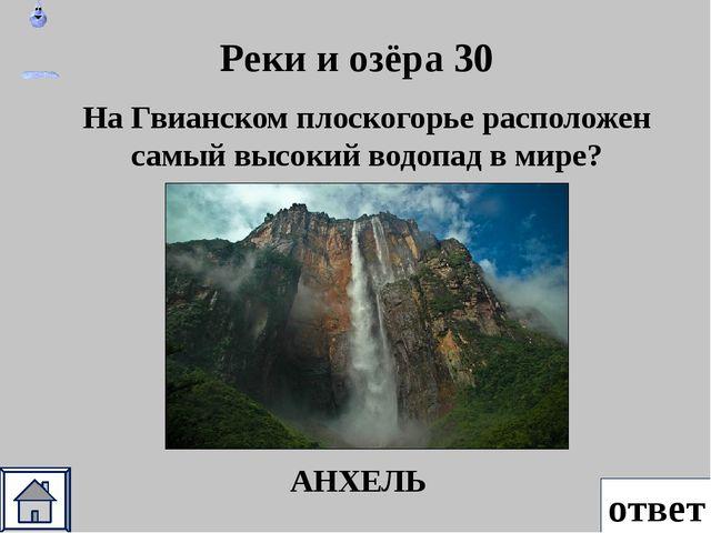 Растения 50 ответ Как по другому называется чилийская сосна, размер шишки 35...