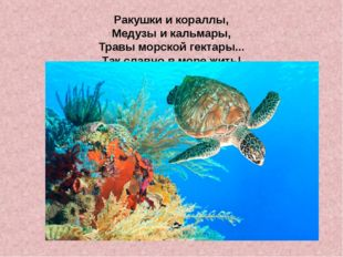 Ракушки и кораллы, Медузы и кальмары, Травы морской гектары... Так славно в м