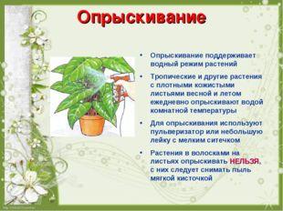 Опрыскивание Опрыскивание поддерживает водный режим растений Тропические и др