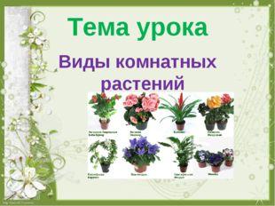 Тема урока Виды комнатных растений