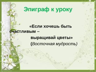 Эпиграф к уроку «Если хочешь быть счастливым – выращивай цветы» (Восточная му