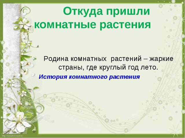 Откуда пришли комнатные растения Родина комнатных растений – жаркие страны,...