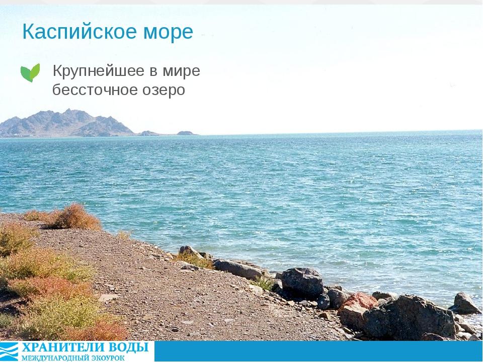 Каспийское море Крупнейшее в мире бессточное озеро