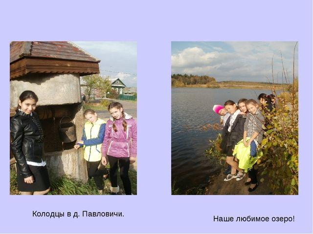 Колодцы в д. Павловичи. Наше любимое озеро!