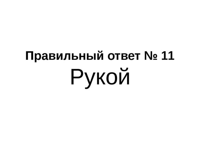 Правильный ответ № 11 Рукой