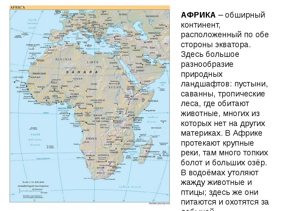АФРИКА – обширный континент, расположенный по обе стороны экватора. Здесь бол...
