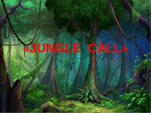 «JUNGLE CALL»