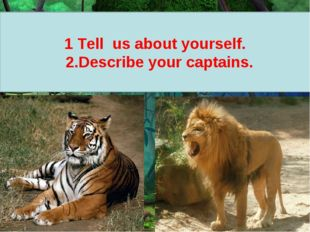 1 Tell us about yourself. 2.Describe your captains.