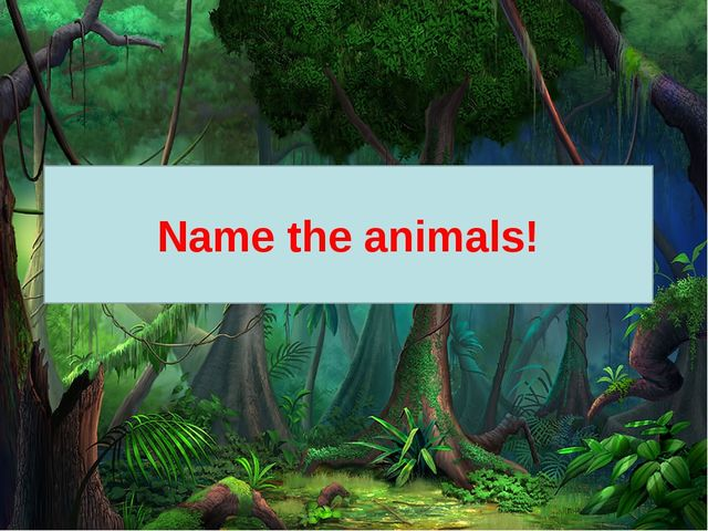 Name the animals!