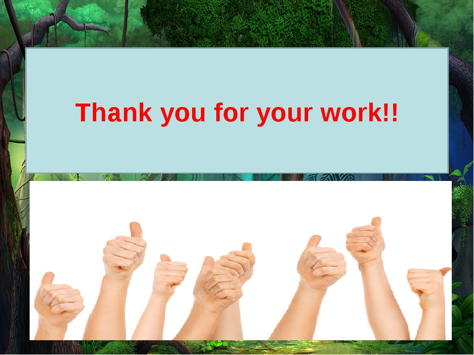 Thank you for your work!!