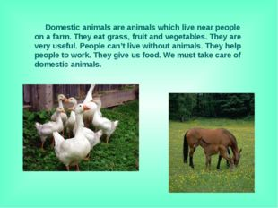 Domestic animals are animals which live near people on a farm. They eat gras