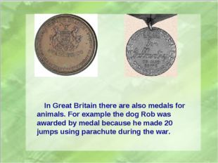 In Great Britain there are also medals for animals. For example the dog Rob