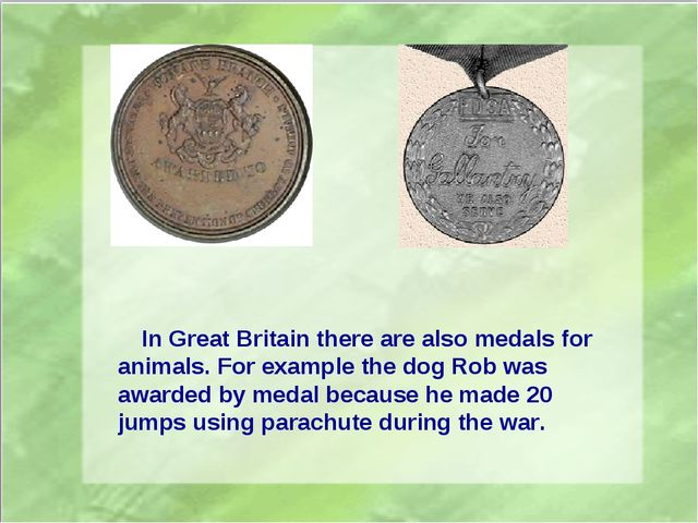 In Great Britain there are also medals for animals. For example the dog Rob...
