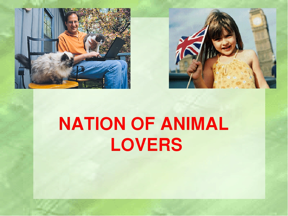 NATION OF ANIMAL LOVERS