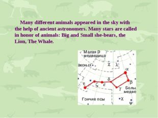 Many different animals appeared in the sky with the help of ancient astronom