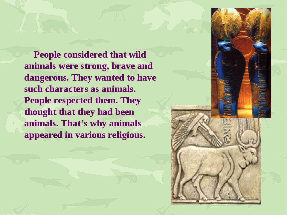 People considered that wild animals were strong, brave and dangerous. They w...