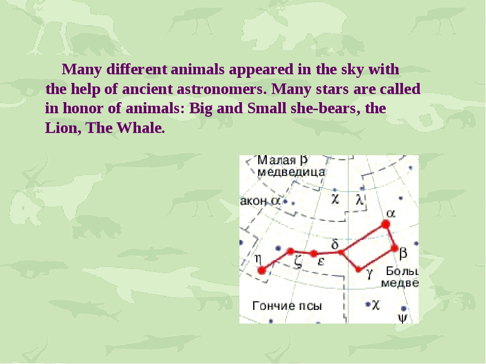 Many different animals appeared in the sky with the help of ancient astronom...