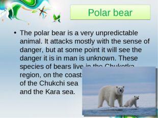 Polar bear The polar bear is a very unpredictable animal. It attacks mostly w