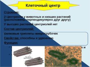 Строение: 2 Центриоли у животных и низших растений (расположены перпендикуляр