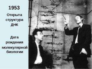 1953 Фрэнсис Крик Джеймс Уотсон Открыта структура ДНК Дата рождения молекуляр