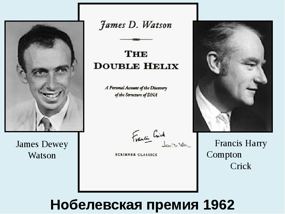 Francis Harry Compton Crick James Dewey Watson Нобелевская премия 1962