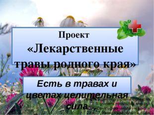 Проект «Лекарственные травы родного края» Есть в травах и цветах целительная