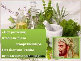 «Нет растения, чтобы не было лекарственным. Нет болезни, чтобы не вылечили р