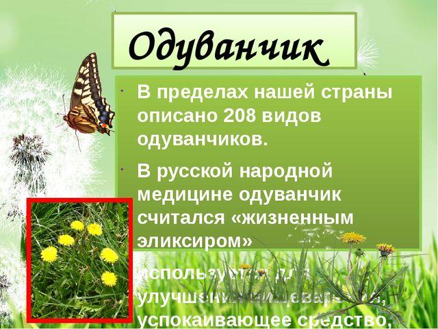 Одуванчик В пределах нашей страны описано 208 видов одуванчиков. В русской на...