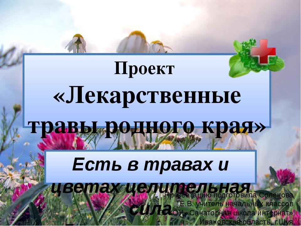 Проект «Лекарственные травы родного края» Есть в травах и цветах целительная...