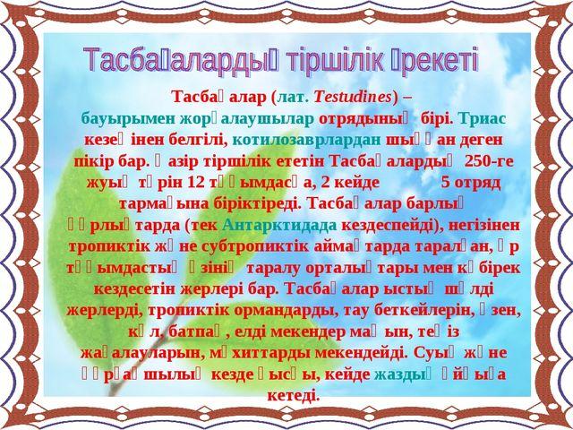 Тасбақалар (лат. Testudines) – бауырымен жорғалаушылар отрядының бірі. Триас...