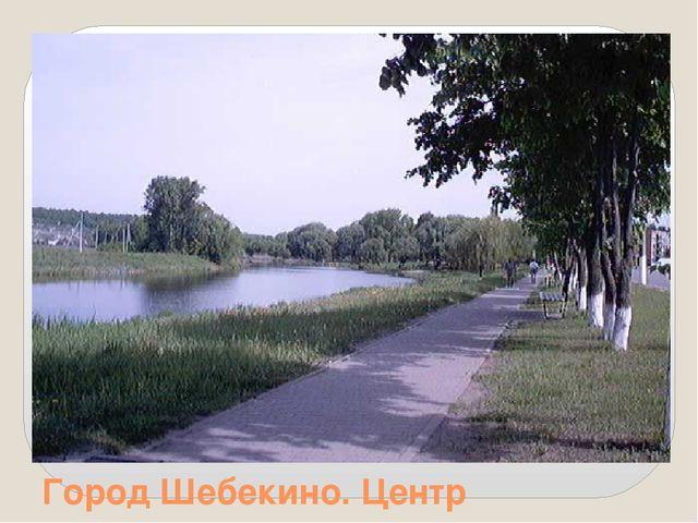 Город Шебекино. Центр