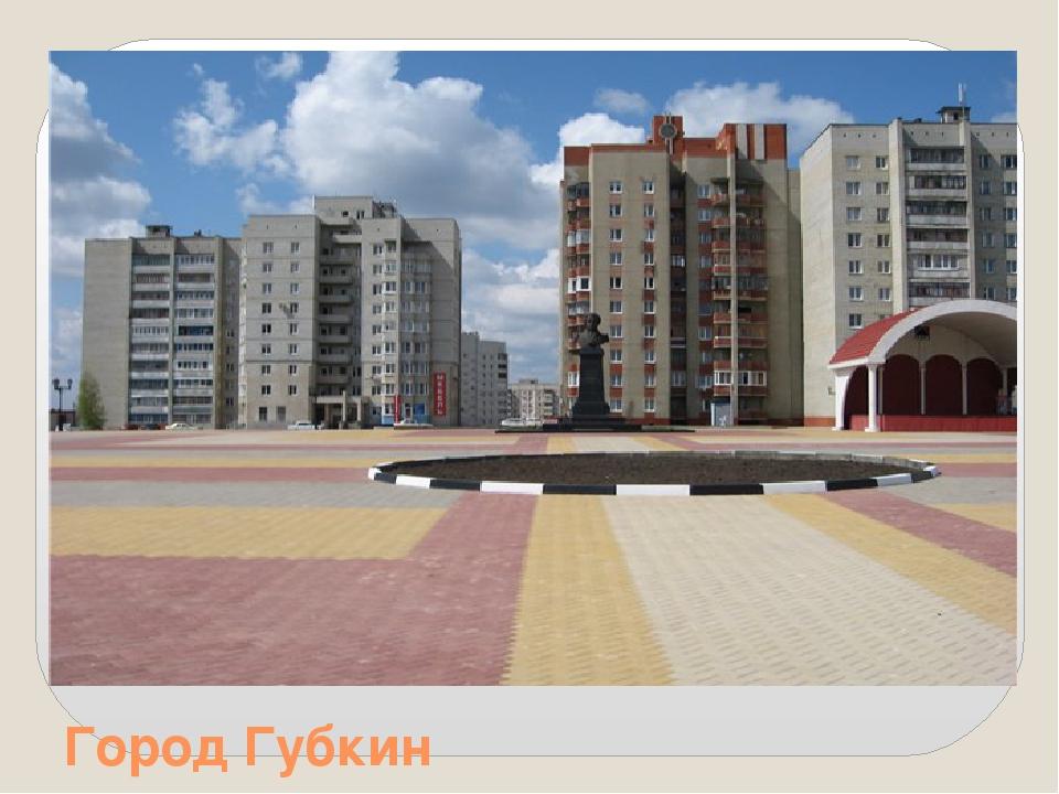 Город Губкин