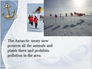 The Antarctic treaty now protects all the animals and plants there and prohib
