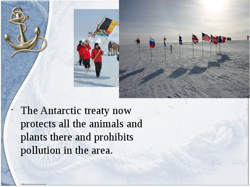 The Antarctic treaty now protects all the animals and plants there and prohib...