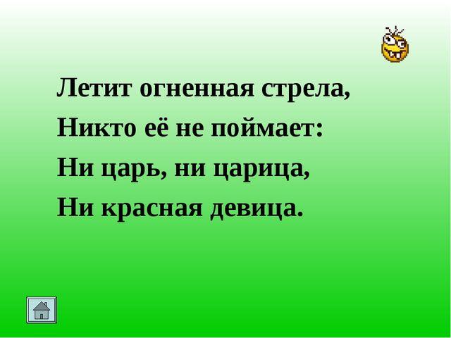 Летит огненная стрела, Никто её не поймает: Ни царь, ни царица, Ни красная д...